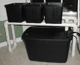 buckets on drain line