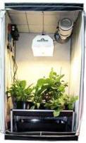 hydroponics grow closet