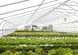 greenhouses we recommend and sell on this website we are authorized farmtek dealers and highly recommend their products all greenhouse kits come with - Commercial Greenhouse Kits