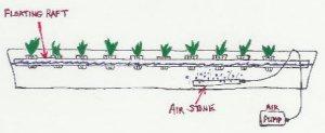 lettuce raft diagram