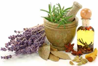 processing medicinal herbs