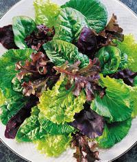 sweet salad heirloom mix