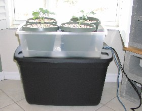 ebband flow mini farm