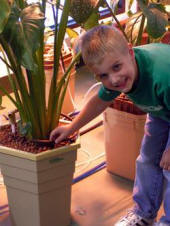 children love hydroponic gardening