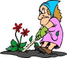 weeding; what a chore