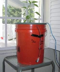 bucket bubbler all set up