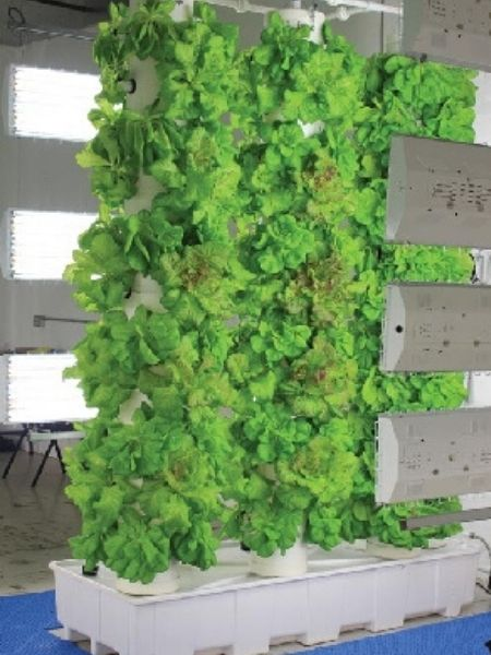 Farmtek vertical garden