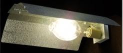 hid gro lamp