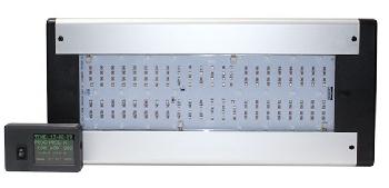LED 550 b