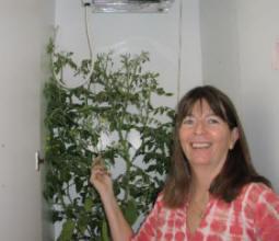 Stella's hydroponic closet