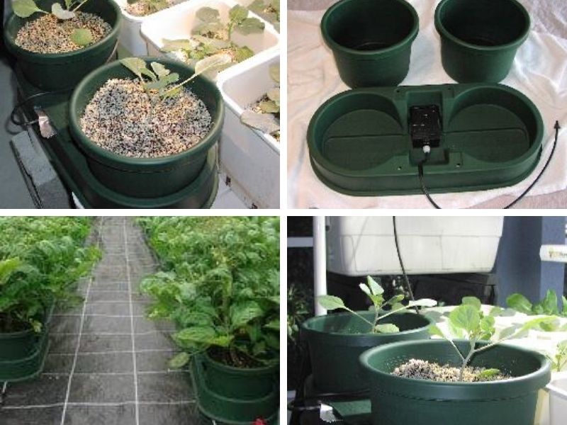 Wick hydroponic system parts and setup